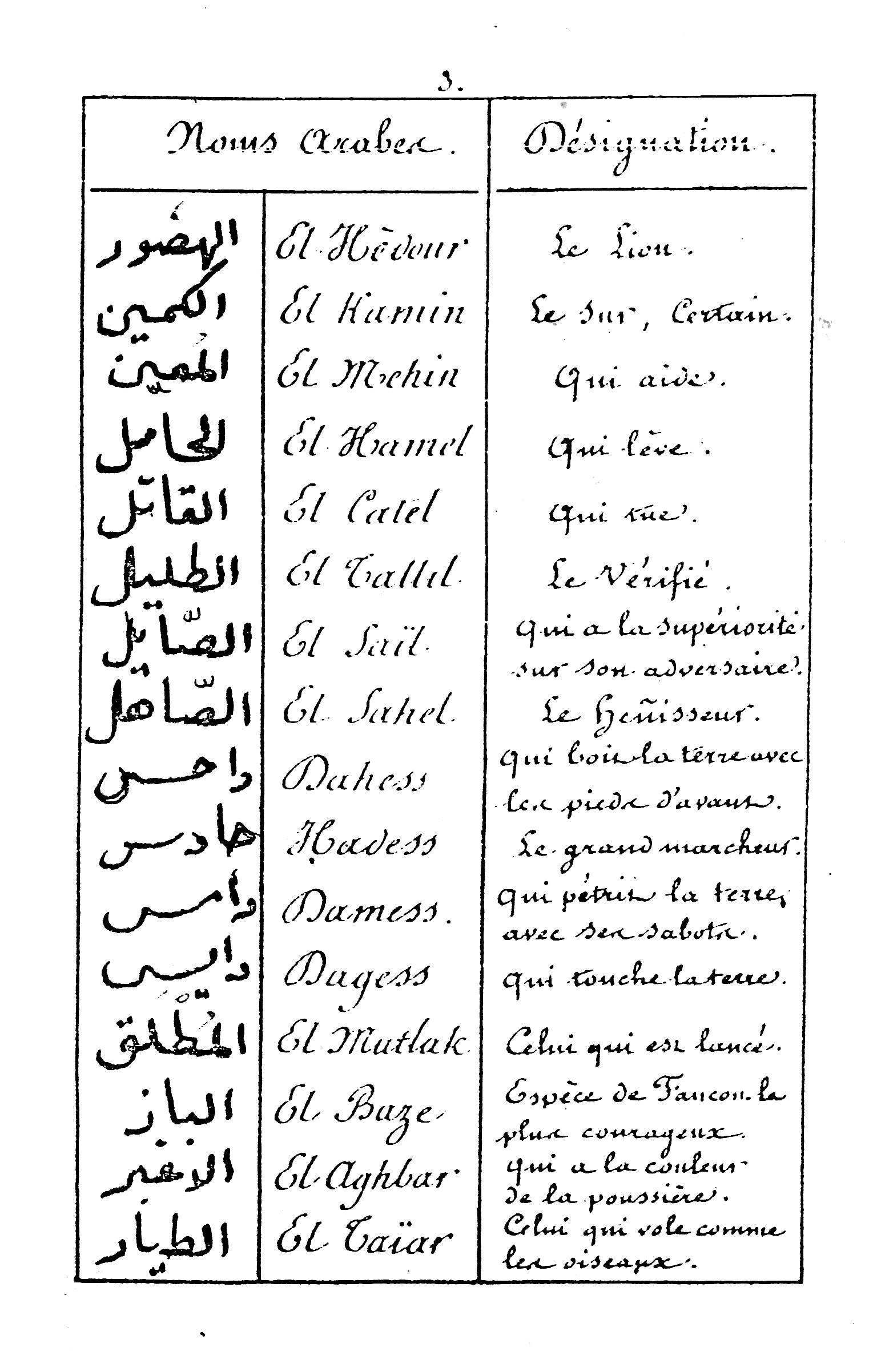 cheval arabe nom